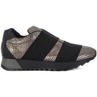Zapatos Mujer Zapatillas bajas Stokton NAPPA BRONZE Multicolore