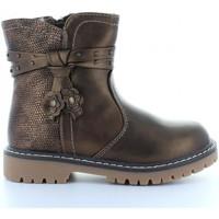 Zapatos Niña Botas de caña baja Happy Bee B169120-B2512 Marrón