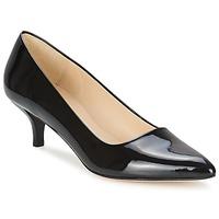 Zapatos Mujer Zapatos de tacón Paco Gil UTIEL Negro