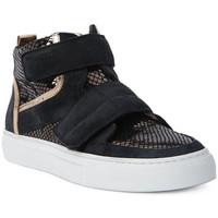 Zapatos Hombre Zapatillas altas Logan CROSSING Marrone