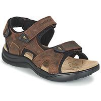 Zapatos Hombre Sandalias de deporte Lumberjack EARTH Marrón