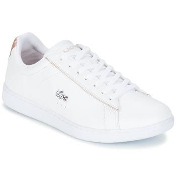 Zapatos Mujer Zapatillas bajas Lacoste CARNABY EVO 217 2 Blanco / Rosa