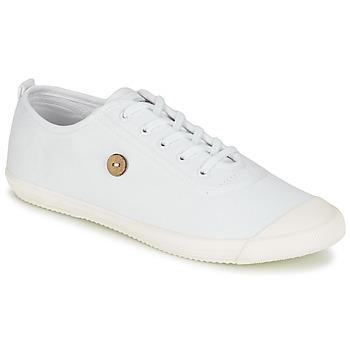 Zapatos Zapatillas bajas Faguo OAK Blanco