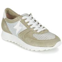 Zapatos Mujer Zapatillas bajas Mjus HONEY Kaki