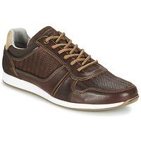 Zapatos Hombre Zapatillas bajas Bullboxer IJINOTE Marrón