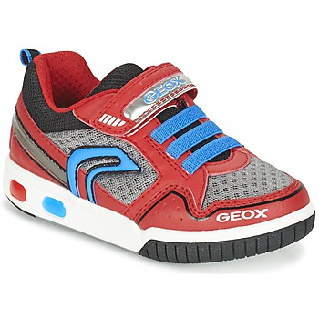 Zapatos Niño Zapatillas bajas Geox J GREGG B Rojo / Azul