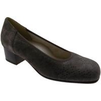 Zapatos Mujer Zapatos de tacón Loren LOP5414to tortora