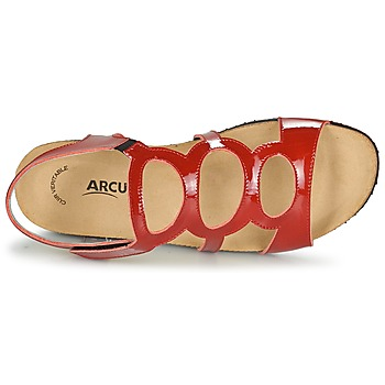 Arcus BERNER Rojo