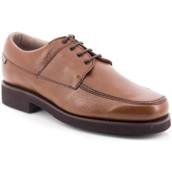 Zapatos Hombre Derbie Losal 2456 Marrón