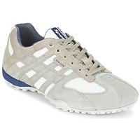 Zapatos Hombre Zapatillas bajas Geox SNAKE Gris / Blanco