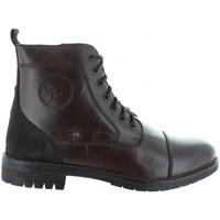 Zapatos Hombre Botas urbanas Xti 46318 Marrón
