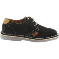 Zapatos Niño Zapatos bajos Xti 53949 Marrón