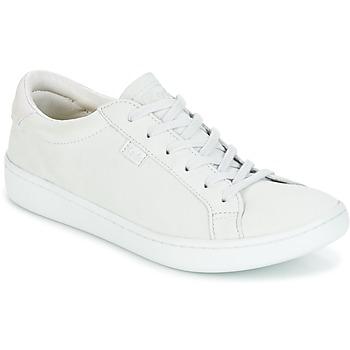 Zapatos Mujer Zapatillas bajas Keds ACE MONO Glacial / Gray