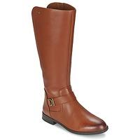 Zapatos Mujer Botas urbanas Clarks MINT TREAT GTX Marrón