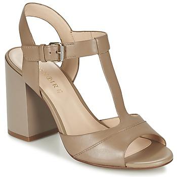 Zapatos Mujer Sandalias Café Noir GIMOTTI Topotea