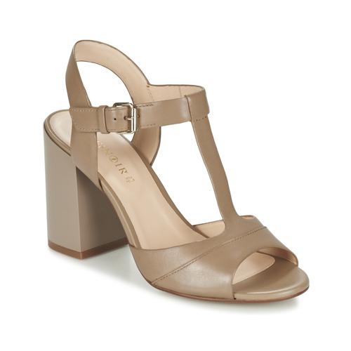 Los últimos zapatos de hombre y mujer Café Noir GIMOTTI Topotea - Envío gratis Nueva promoción - Zapatos Sandalias Mujer