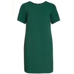 textil Mujer vestidos cortos Kocca Vestido ANTHAN Verde
