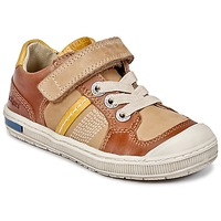 Zapatos Niño Zapatillas bajas Kickers IGORLOW Camel