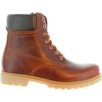 Zapatos Hombre Botas urbanas Panama Jack PANAMA 03 C51 Marr?n