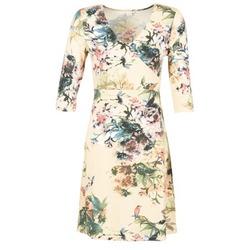 textil Mujer vestidos cortos Cream ROSEMARY Multicolor