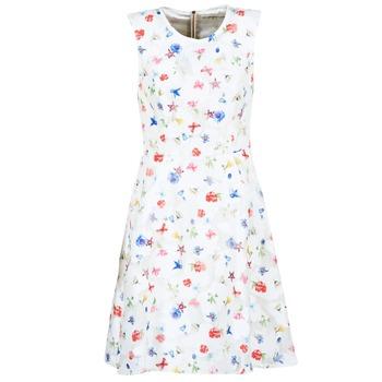 textil Mujer vestidos cortos Derhy MAESTRIA Blanco
