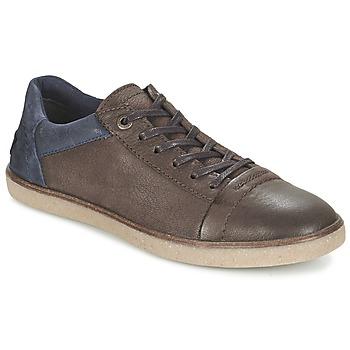 Zapatos Hombre Zapatillas bajas Kickers CALIC Marrón