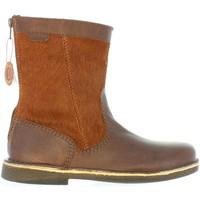 Zapatos Mujer Botas urbanas Kickers 511630-50 LEXY Marr?n