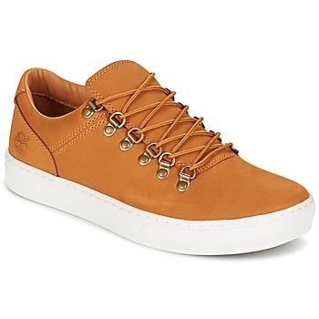 Zapatos Hombre Zapatillas bajas Timberland ADV 2.0 CUPSOLE ALPINE OX Marrón