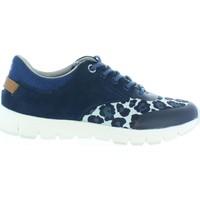 Zapatos Niños Deportivas Moda Pepe jeans PGS30211 COVEN BASIC Azul