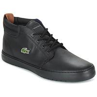 Zapatos Hombre Zapatillas altas Lacoste AMPTHILL TERRA Negro