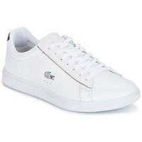 Zapatos Mujer Zapatillas bajas Lacoste CARNABY EVO Blanco