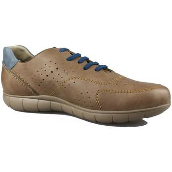 Zapatos Hombre Zapatillas bajas CallagHan WILD HORSE TAUPE