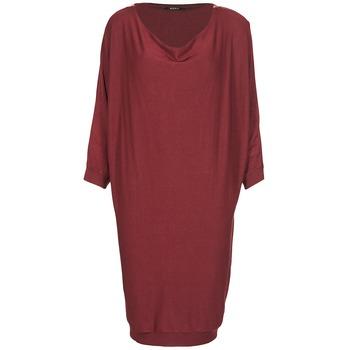 textil Mujer vestidos cortos Kookaï BLANDI Burdeo