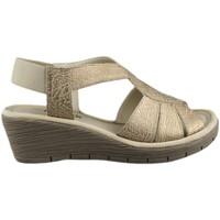 Zapatos Mujer Sandalias Flexx AMMAPETE MARRON