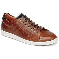 Zapatos Hombre Zapatillas bajas Redskins ORMIL Cognac