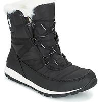 Zapatos Mujer Botas de caña baja Sorel WHITNEY SHORT LACE Negro