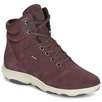 Zapatos Mujer Zapatillas altas Geox D NEBULA 4 X 4 B ABX Burdeo