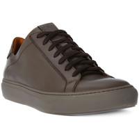 Zapatos Hombre Zapatillas bajas Lion WEST 311 Marrone