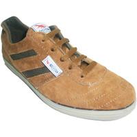 Zapatos Hombre Fitness / Training Segarra Zapatilla deportiva serraje marrón