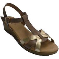 Zapatos Mujer Sandalias Rodri Sandalia vestir mujer abrochadas con hebilla al tobillo marrón
