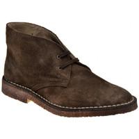 Zapatos Hombre Botas de caña baja Koloski  Marrón