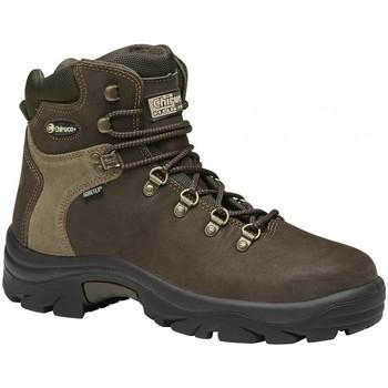 Zapatos Senderismo Chiruca Botas  Lince 01 Goretex Verde