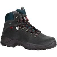 Zapatos Hombre Senderismo Chiruca Botas  Xacobeo 05 Gore-Tex Gris