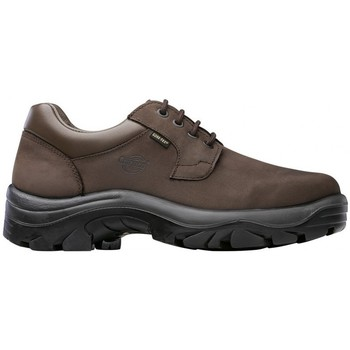Zapatos Zapatos de trabajo Chiruca Zapatos  Fox Enciso 12 Goretex Marrón