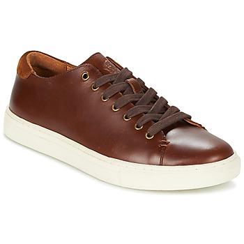 Zapatos Hombre Zapatillas bajas Ralph Lauren JERMAIN Marrón