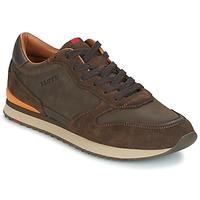 Zapatos Hombre Zapatillas bajas Lloyd EDWIN Marrón
