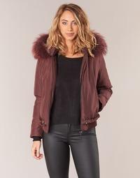 textil Mujer cazadoras Oakwood 62432 Burdeo