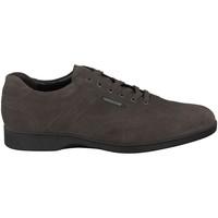 Zapatos Hombre Zapatillas bajas Mephisto STEFANO Gris