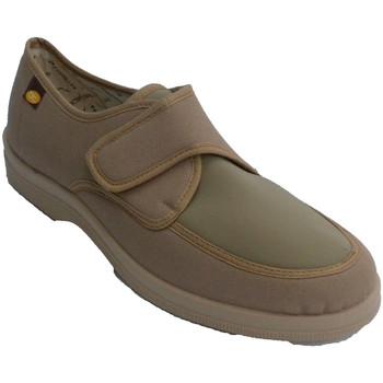 Zapatos Hombre Pantuflas Doctor Cutillas Zaptilla hombre con velcro muy cómoda con pala de licra beige