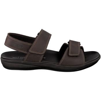 Zapatos Hombre Sandalias Mephisto SIMON Marrón